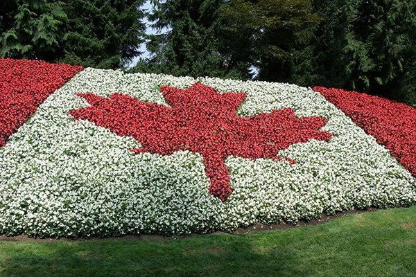 How to move to Canada from the United States?
