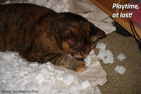 Hvae fun but be prudent when disposing of packing materials after a move.